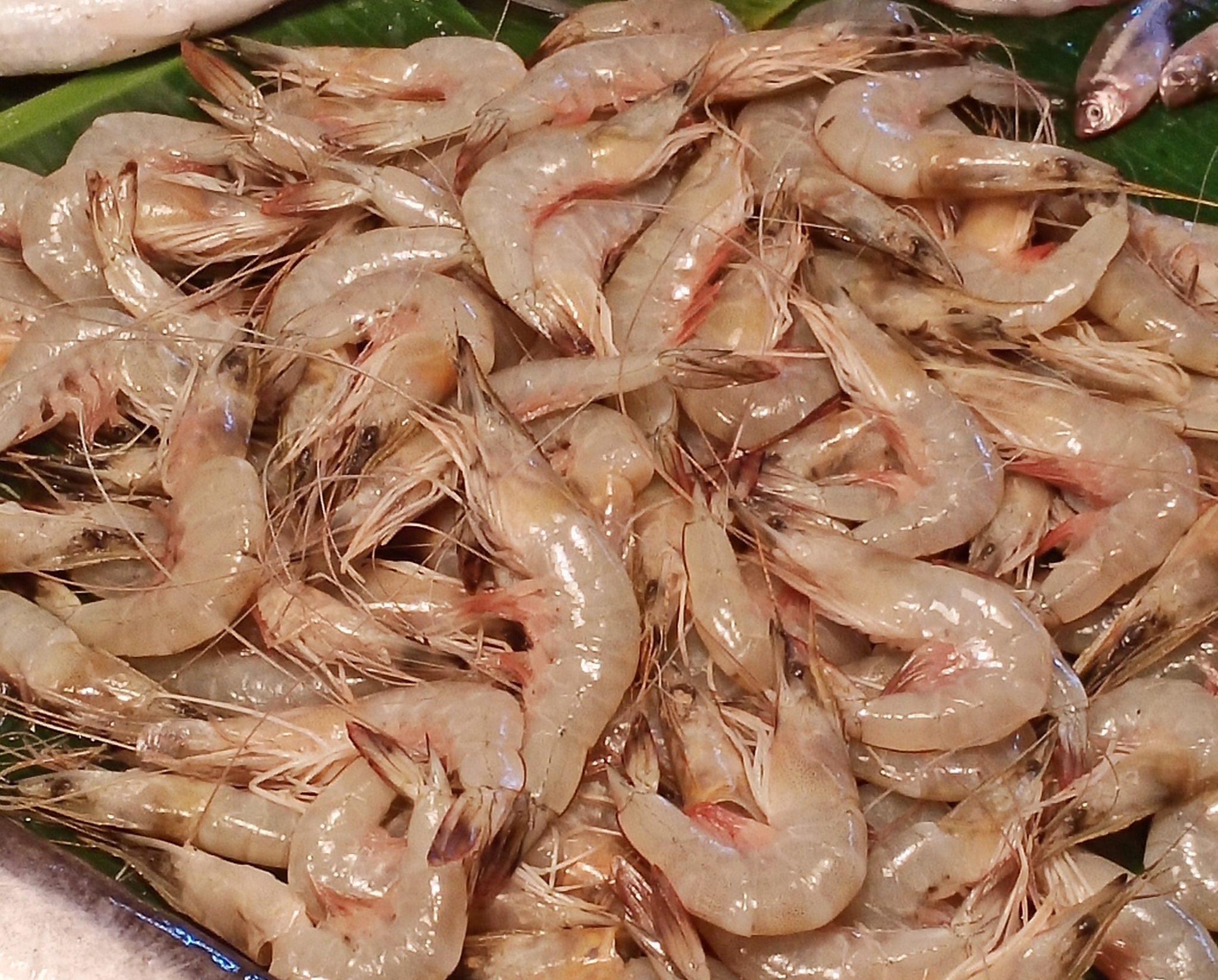 Chingri Chali Deshi River Fish